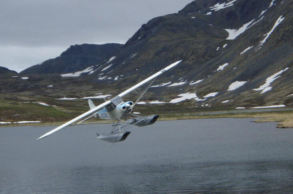 Wildlife Scenic Flights